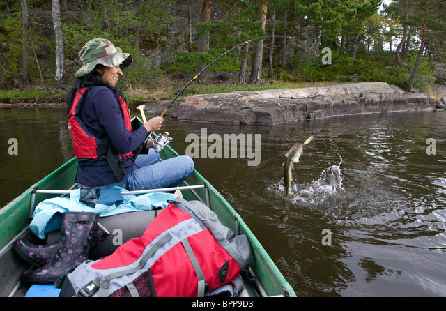 Girl fighting with a northern pike caught in the lake Vansjø, Østfold fylke, Norway. - Stock Image