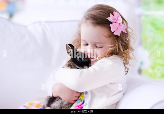 Child playing with a real rabbit. Kids play with pets. Little girl holding bunny. Children and animals at home or - Stock Image
