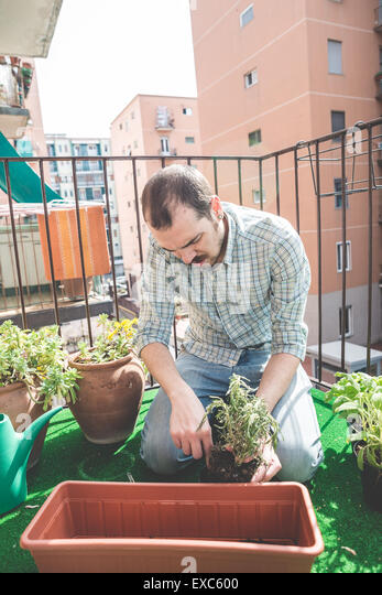 handsome stylish man gardening at home - Stock Image