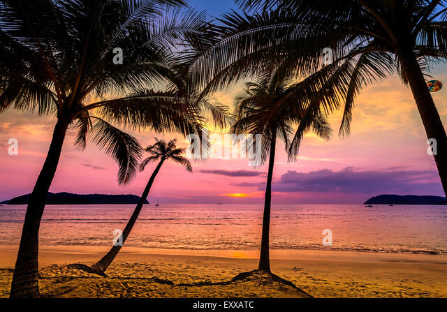 Purple sunset over beach, summer holidays background. - Stock Image