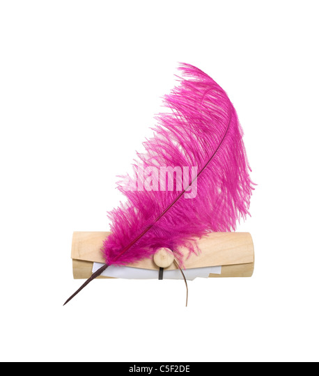 Letters to you shown by papers peeking out of a wooden tube envelope with a feathered quill pen - path included - Stock Image