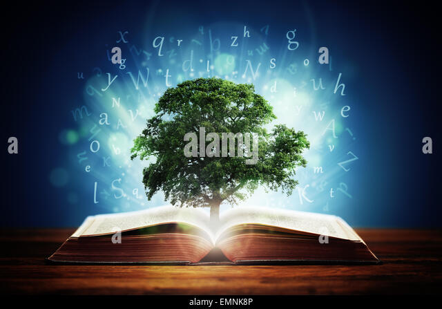 Tree of knowledge - Stock Image