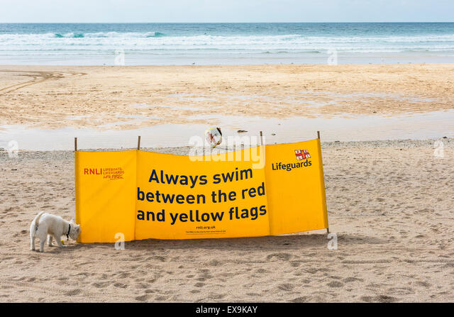 A RNLI safety sign on Fistral Beach in Newquay, Cornwall. - Stock Image