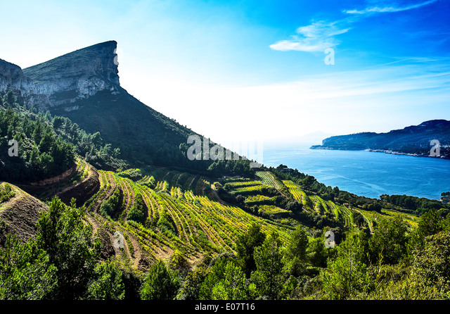 Cassis wine stock photos cassis wine stock images alamy for Ca bouche du rhone