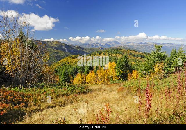 mountain meadow autumn above - photo #8