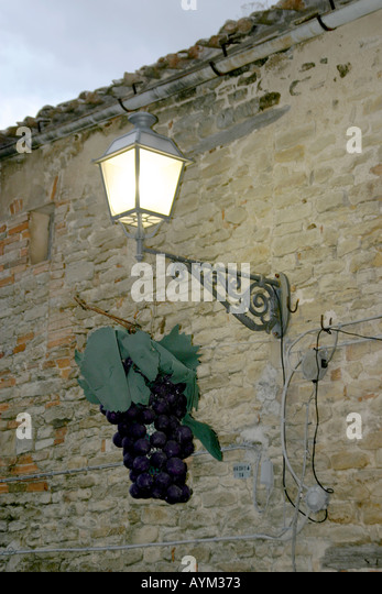 Street lantern in Le March Italy decorated  with a bunch of grapes during a grape wine festival - Stock Image