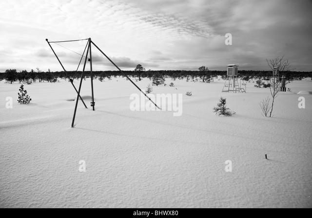 Bog research station - Stock Image