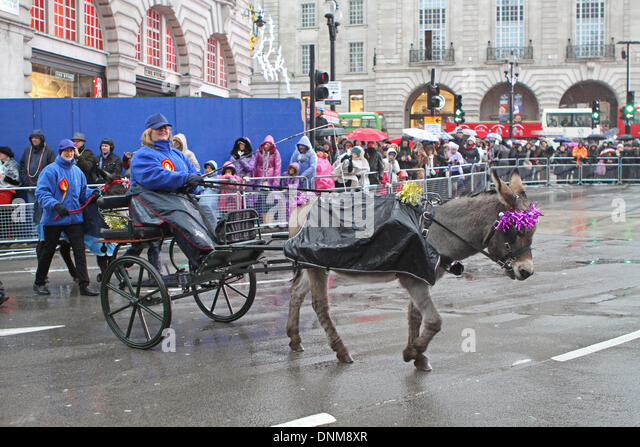 London,UK,1st January 2014,Little Donkey and cart took part in the London's New Year's Day Parade 2014 Credit: - Stock Image