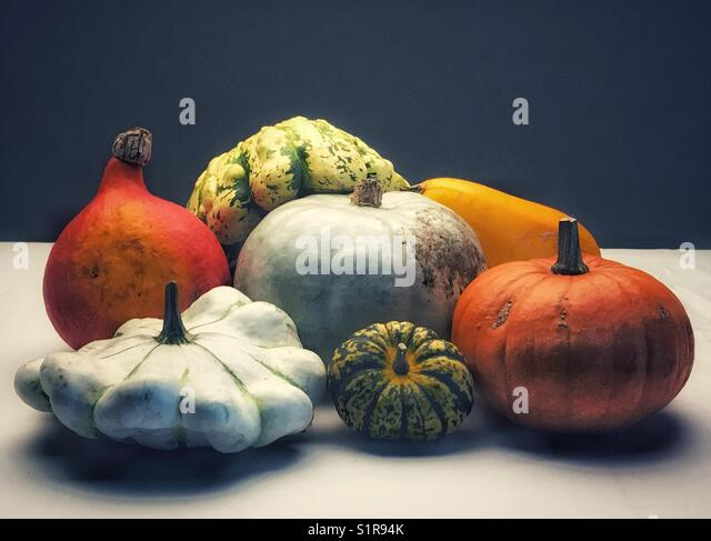 A variety of squash vegetables - Stock Image