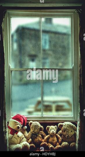 teddy bears on window - Stock Image