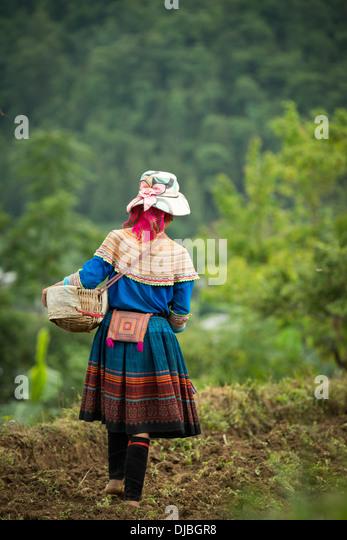 Minority group Flower Hmong woman seeding corn, Bac Ha, Lao Cai, Vietnam - Stock-Bilder