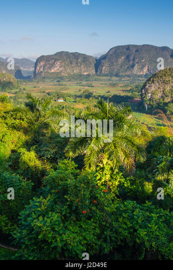 Cuba. Pinar del Rio. Vinales. The Vinales valley in the early morning. - Stock Image