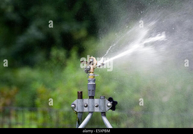 Rain Bird Adjustable Brass Impact Rotor Blade hitting a water stream on the right side of the sprinkler head - Stock Image