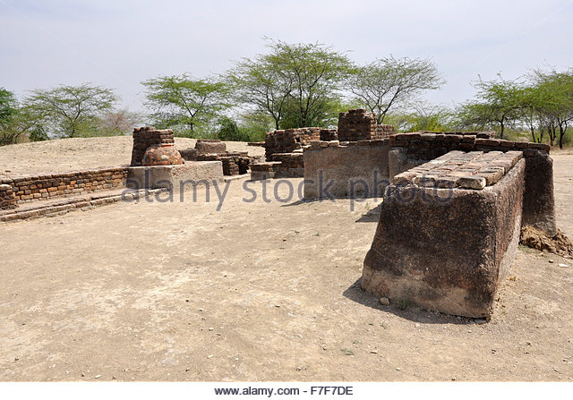 Gujarat,Lothal,ruins of ancient city,Lothal Indus Valley Civilization - Stock Image