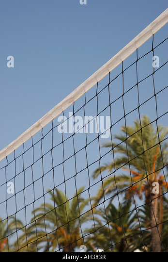 volleyball net with palm trees in the backgound - Stock Image