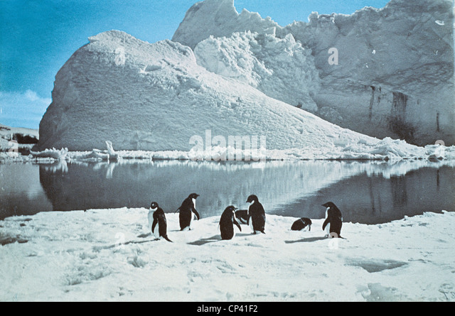 History of Exploration, Antarctica, twentieth century. Pinguni bay photographed by expedition of Robert Falcon Scott - Stock Image