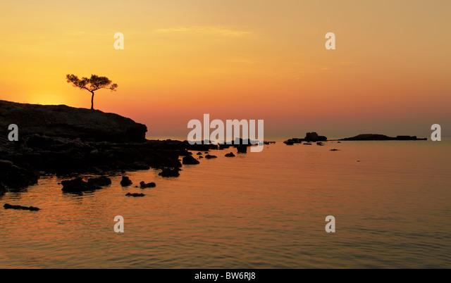 A beautiful Mediterranean sea sunrise with alone pine in the foreground - Stock-Bilder