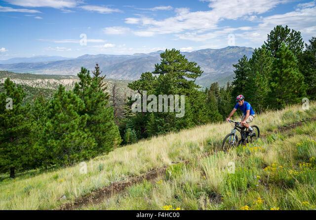 Male mountain bike rider on Little Rainbow Trail, near Bear Creek, Salida, Colorado, USA - Stock Image