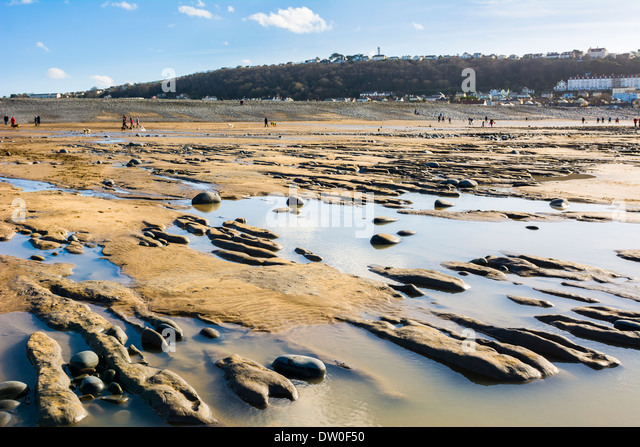 Clay and peat beds containing an ancient forest exposed on the beach at Westward Ho! shortly after the winter storms - Stock Image