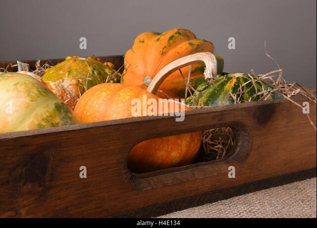 Various Autumn gourds, decorative pumpkins and squash in a wood box. - Stock Image