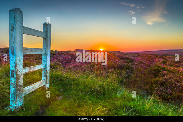 Sunset over Derbyshire heather moorland. - Stock Image