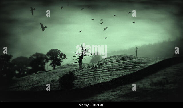 magical dark moody landscape with lone old tree - Stock Image