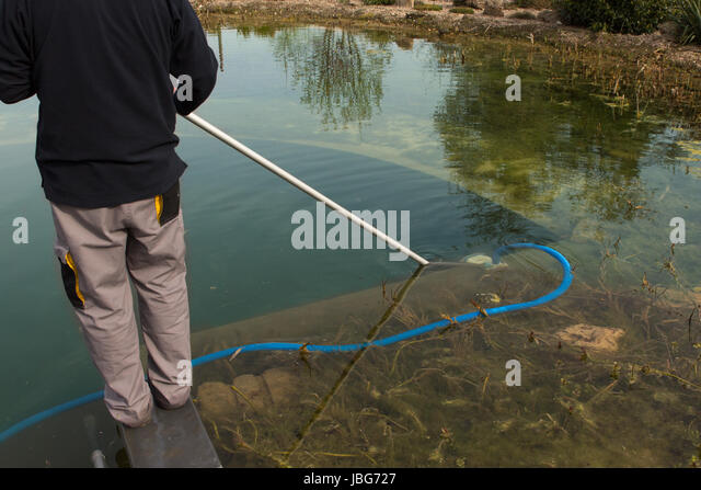 Man Cleaning Pond Stock Photos Man Cleaning Pond Stock