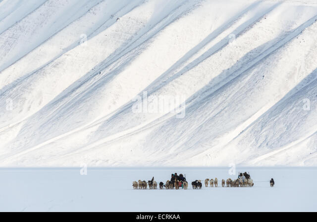 Two mushers with teams of sled dogs running through snow - Stock Image