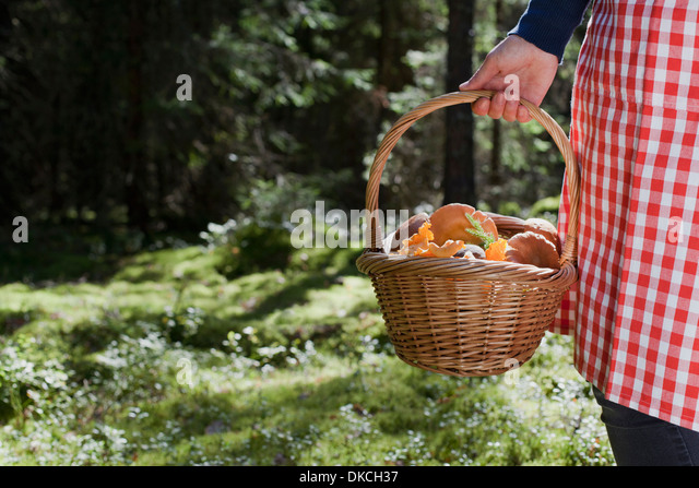 Woman with basket of mushrooms in forest - Stock Image