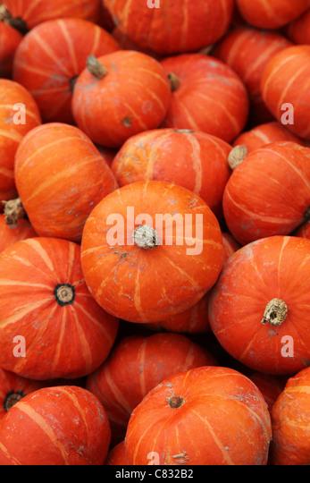 Pumpkin for background - Stock-Bilder
