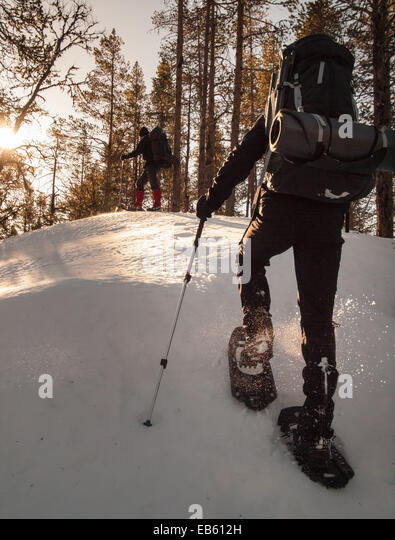two men with heavy rucksacks snowshoeing through woodland in winter. Strongly backlit with bright sunshine. - Stock Image