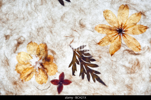 handmade paper background with textures - Stock Image