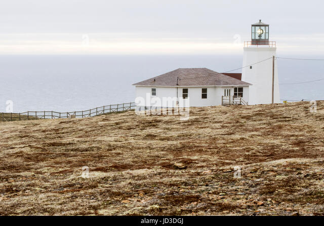 Coast Guard Lighthouse near Cape St. Mary's Ecological Reserve, Cape St. Mary's, Avalon Peninsula, Newfoundland, - Stock Image