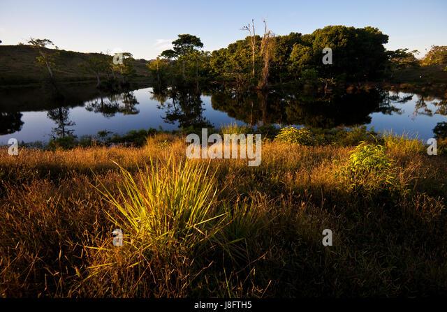 Early morning at Quebro, Veraguas prvince, Republic of Panama. - Stock-Bilder