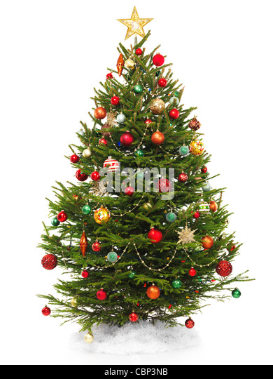 Beautiful decorated Christmas tree with a star topper isolated on white background. - Stock Image