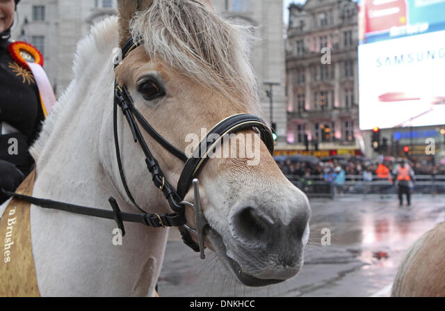 London,UK,1st January 2014,Horses joined the London's New Year's Day Parade 2014 Credit: Keith Larby/Alamy - Stock Image