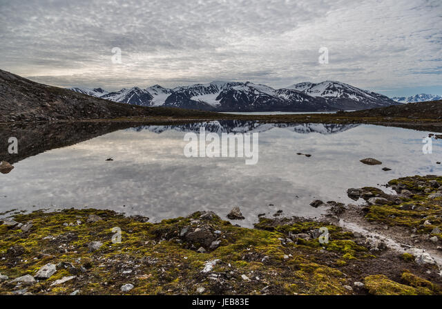 The delicate pattern of the grey clouds is reflected in a small pool near Makeøyane in Spitzbergen, close to - Stock Image