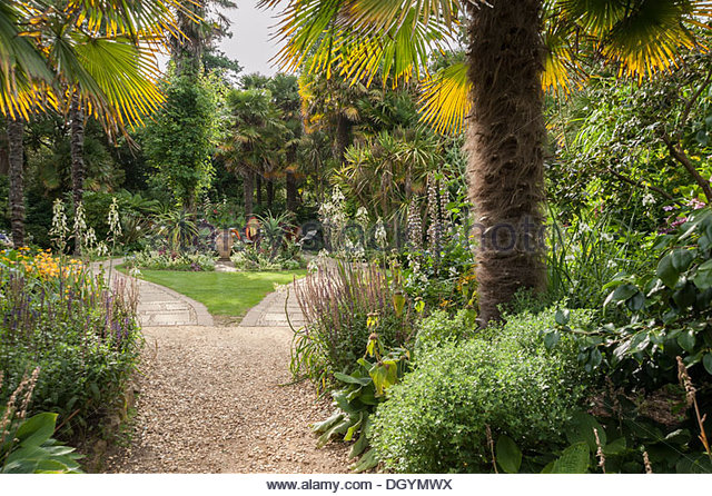 Galtonia stock photos galtonia stock images alamy for Victorian garden trees