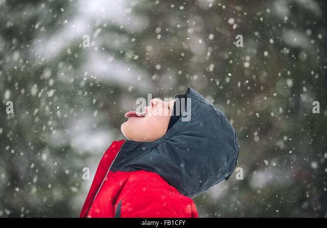 Side view of boy sticking out tongue catching snowflakes - Stock Image