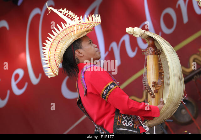 London, UK. 31 May 2014. A music artist plays a traditional string instrument on stage. Credit: David Mbiyu/ Alamy - Stock Image