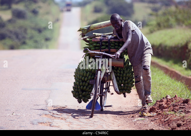 Mbarara Stock Photos Amp Mbarara Stock Images Alamy