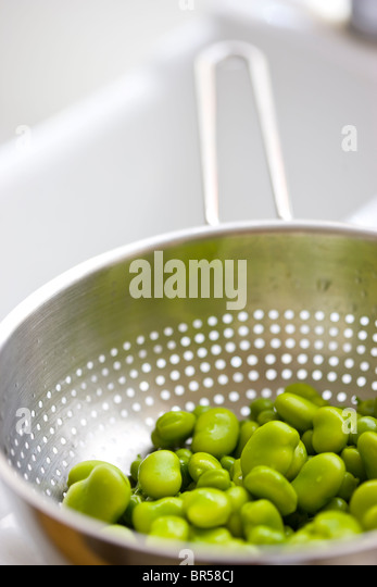 Broad Beans Draining in Colander - Stock Image