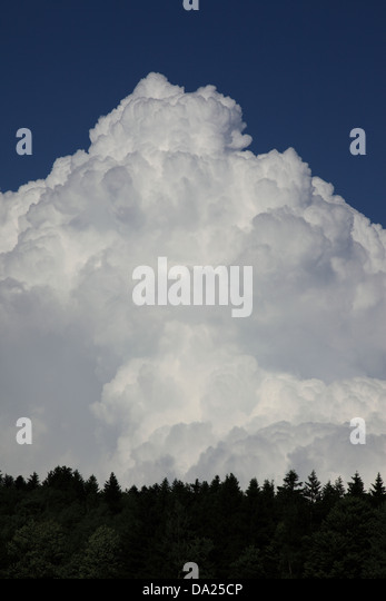Huge storm cloud formation gathering against a blue sky and above treetops. Photo by Willy Matheisl - Stock Image