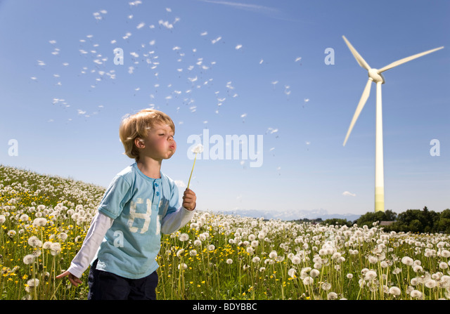 boy blowing dandelion at wind turbine - Stock Image