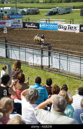 ILLINOIS Grayslake Young child try to ride sheep in arena mutton busting Lake County Fair ewe spectators in stands - Stock Image
