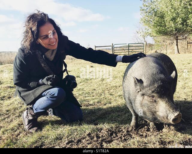 A woman petting a pig. - Stock Image