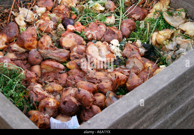 COMPOSTING ALL FOOD WASTE CAN BE COMPOSTED - Stock Image