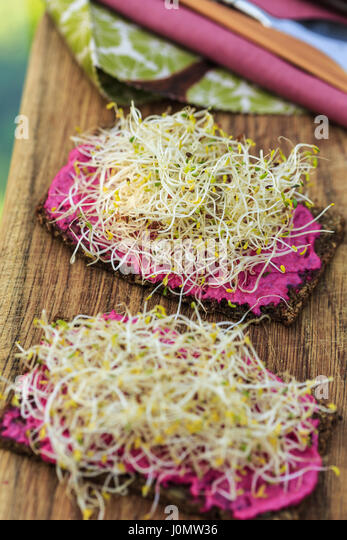 Rye bread with sprouts and beetroot cream - Stock Image