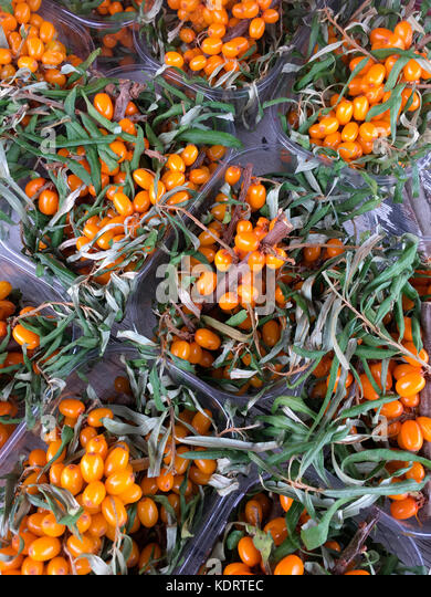 Sea Buck Thorn (Tyrnimarja) on a market stall in Germany. - Stock Image