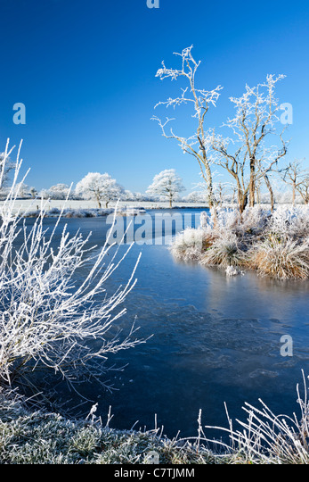 Hoar Frosted trees and frozen river in winter time, Morchard Road, Devon, England. Winter (December) 2010. - Stock Image